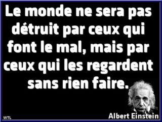 citation-einstein.jpg