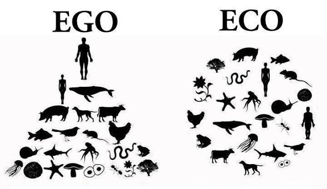 ego-vs-eco.jpg