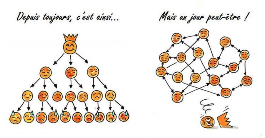 organisation-societe-1.jpg