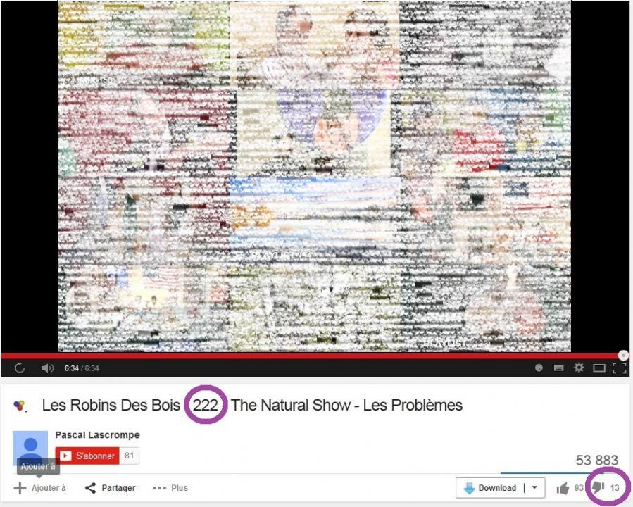 Robin des bois natural show 222 13